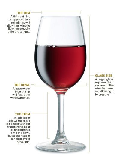 Anatomy of a wine glass