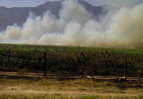 South Africa torched table grapes plantation aka hunger wages