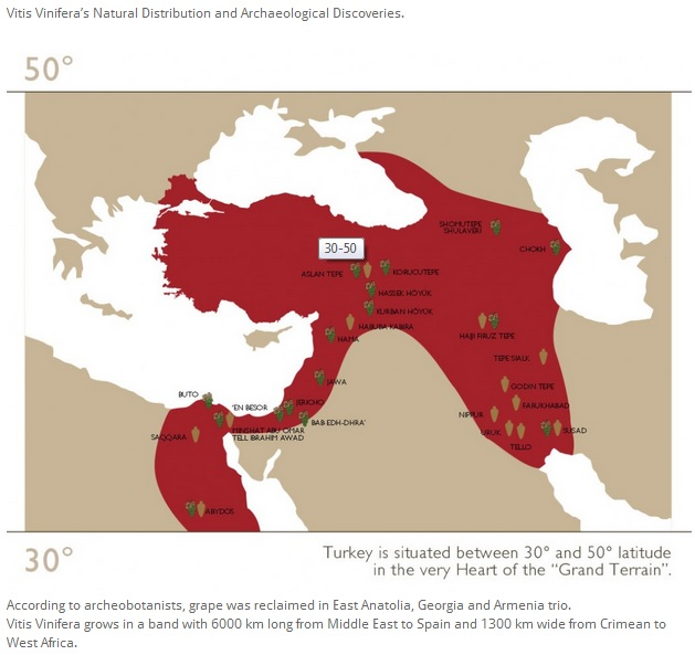 Wine of Turkey map