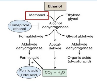 Ethanol Methanol diagram of posibilities