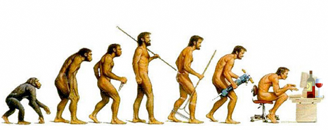 Evolution of Man and wine