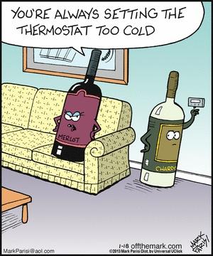 Merlot to Chardonnay Wine Humor