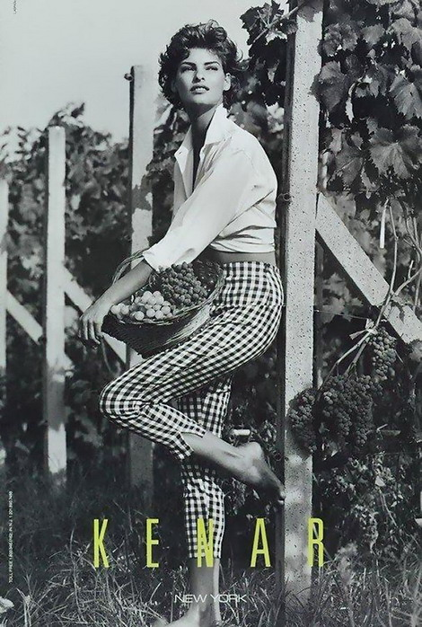 1992 Kenar Linda Evangelista picking grapes