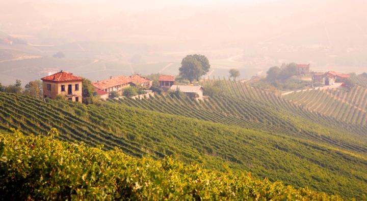 Piemonte Italia vin landskapet