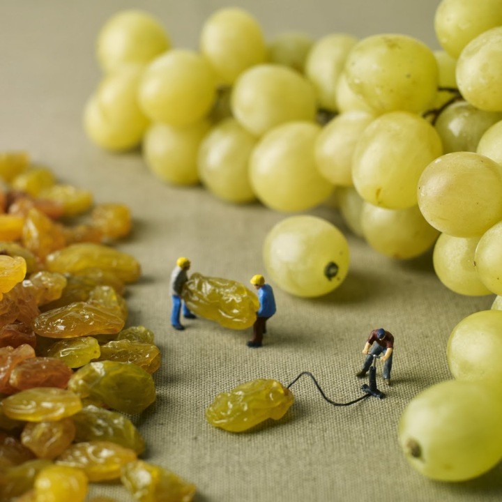 Pierre Javelle & Akiko Ida little people grapes