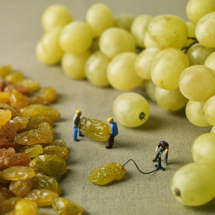 Pierre Javelle & Akiko Ida little people grapes