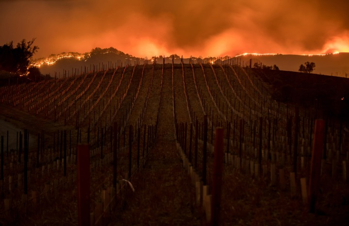 Fire Wine Country California 2017